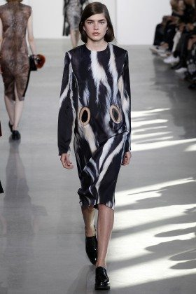 Skylar Tartz - Calvin Klein Collection Fall 2016 Ready to Wear