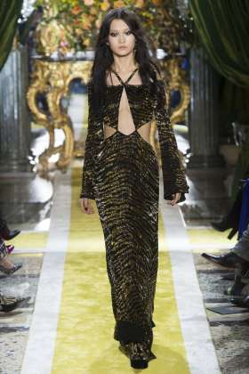 Wangy Xinyu - Roberto Cavalli Fall 2016 Ready-to-Wear