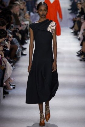 Tami Williams - Christian Dior Fall 2016 Ready-to-Wear