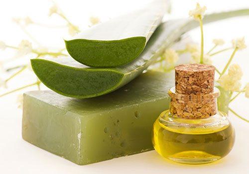 Kuru cilde iyi gelen bitkiler