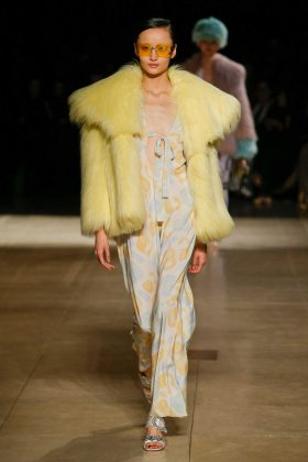 Liu Xu - Miu Miu Fall 2017 Ready-to-Wear